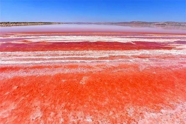 Biraz Kızıl Biraz Mavi, Düzenli Olarak Her Sene Değişen Tuz Gölü'nün Asil Rengi
